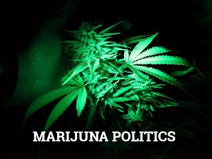 argument on marijuana There is only one absolute argument for marijuana legalization that doesn't involve arbitrary laws decided upon by bureaucrats that's the libertarian argument for legalizing marijuana which is based.